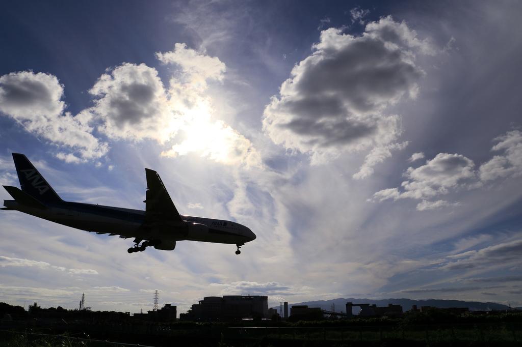 飛行機 フライト キャビンアテンダント 旅 空 仕事 大変