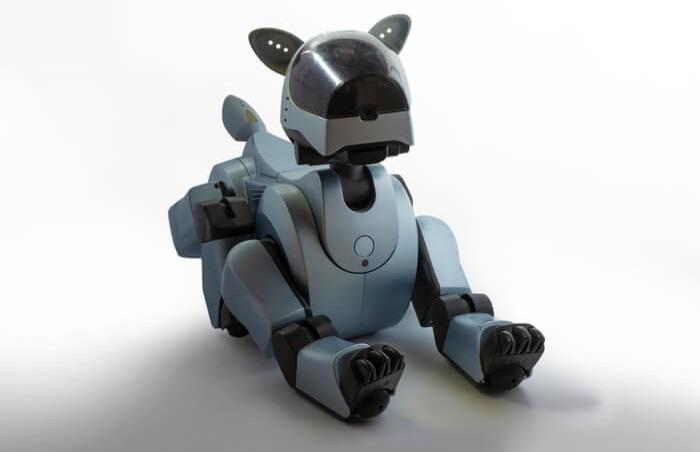 ロボットペット