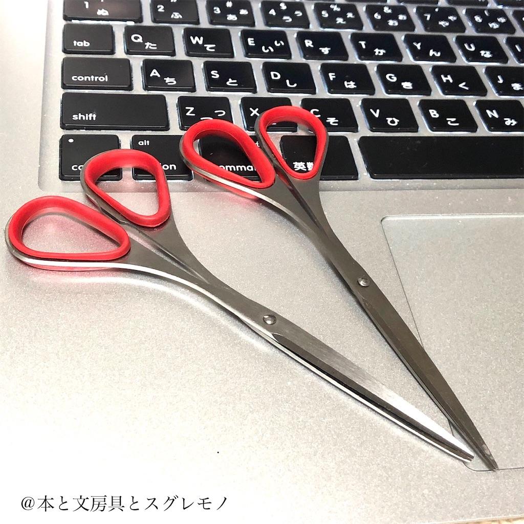 f:id:fumihiro1192:20200601213254j:image