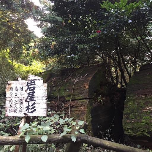 f:id:fumimanokimochi:20161111200400j:image