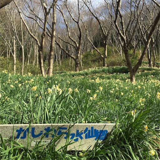 f:id:fumimanokimochi:20170206143026j:image