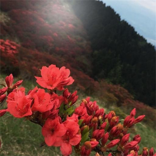 f:id:fumimanokimochi:20170516195950j:image