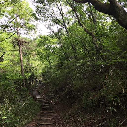 f:id:fumimanokimochi:20170520151637j:image