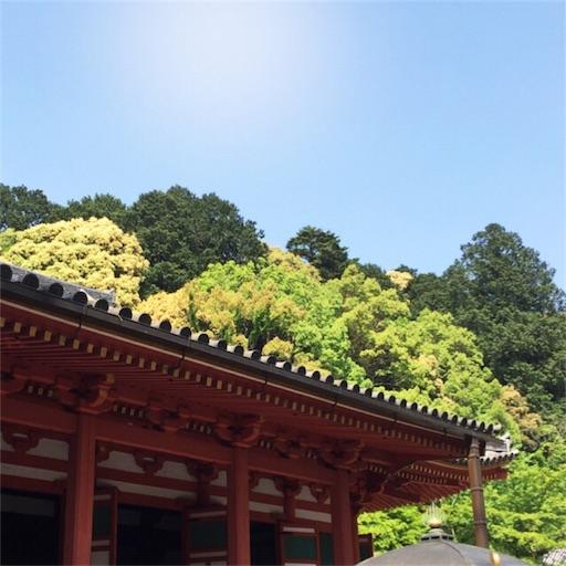 f:id:fumimanokimochi:20170524105317j:image