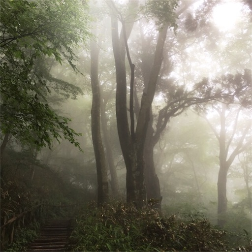 f:id:fumimanokimochi:20170629220630j:image