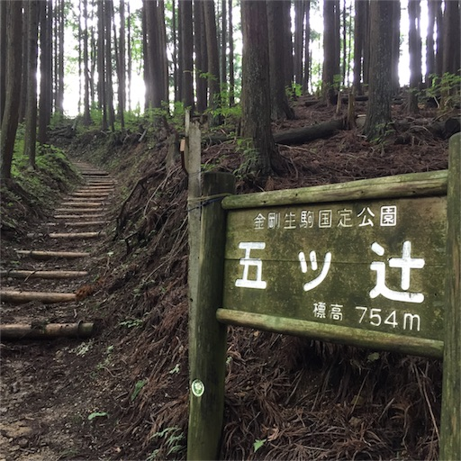 f:id:fumimanokimochi:20170706202519j:image
