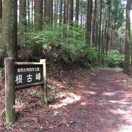 f:id:fumimanokimochi:20170706202546j:image