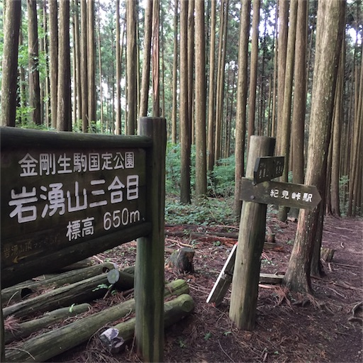 f:id:fumimanokimochi:20170706202616j:image