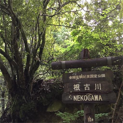 f:id:fumimanokimochi:20170706202758j:image