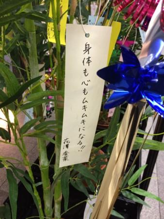 f:id:fumisan:20150707062155j:image