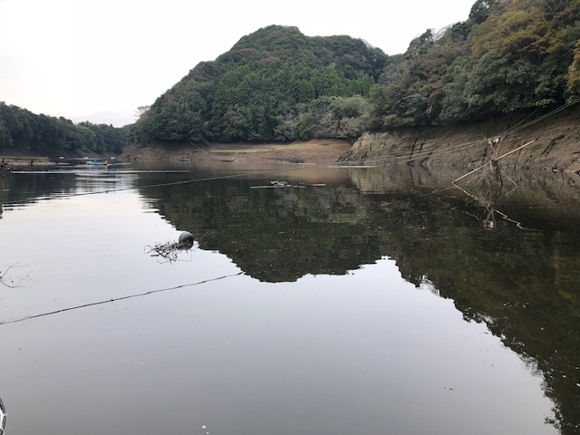 f:id:fumitaka-siro:20181015193305j:plain