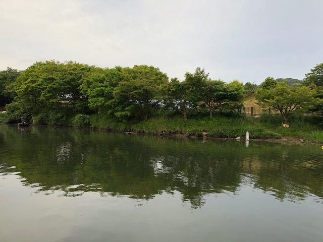 f:id:fumitaka-siro:20181125004735j:plain