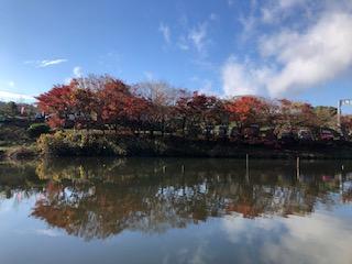 f:id:fumitaka-siro:20190414211036j:plain