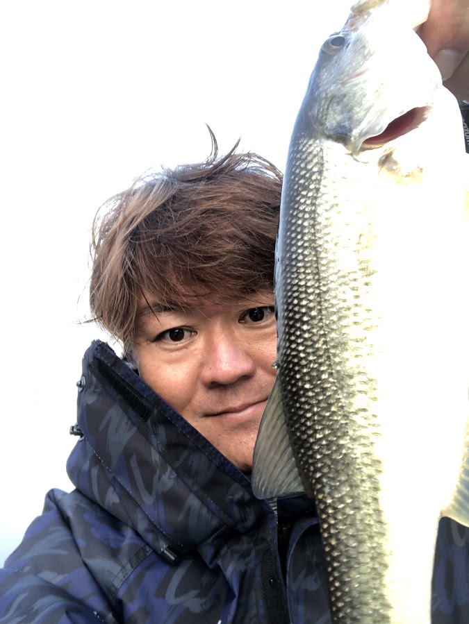 f:id:fumitaka-siro:20191211201505j:plain