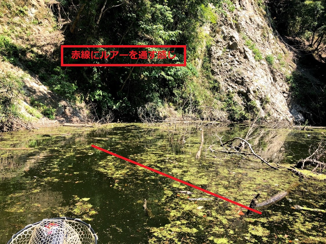 f:id:fumitaka-siro:20200817081227j:plain