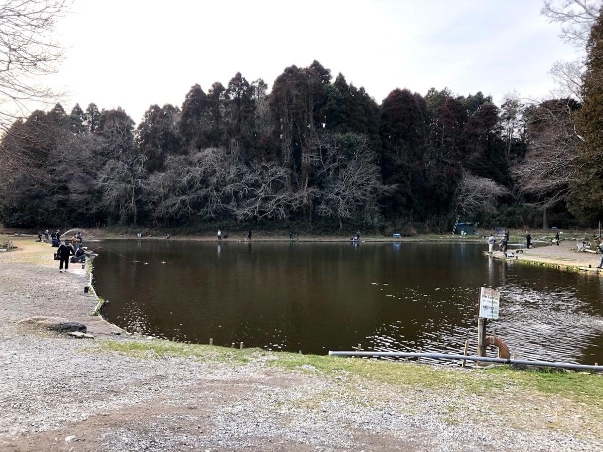 f:id:fumitaka-siro:20210212124949j:plain