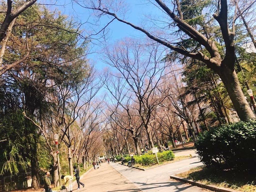 f:id:fumiya0215:20170410132832j:image