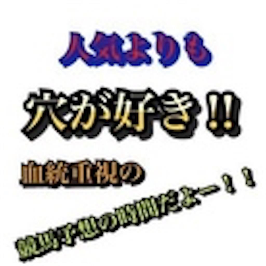 f:id:fumiya_keiba:20190110175341j:image