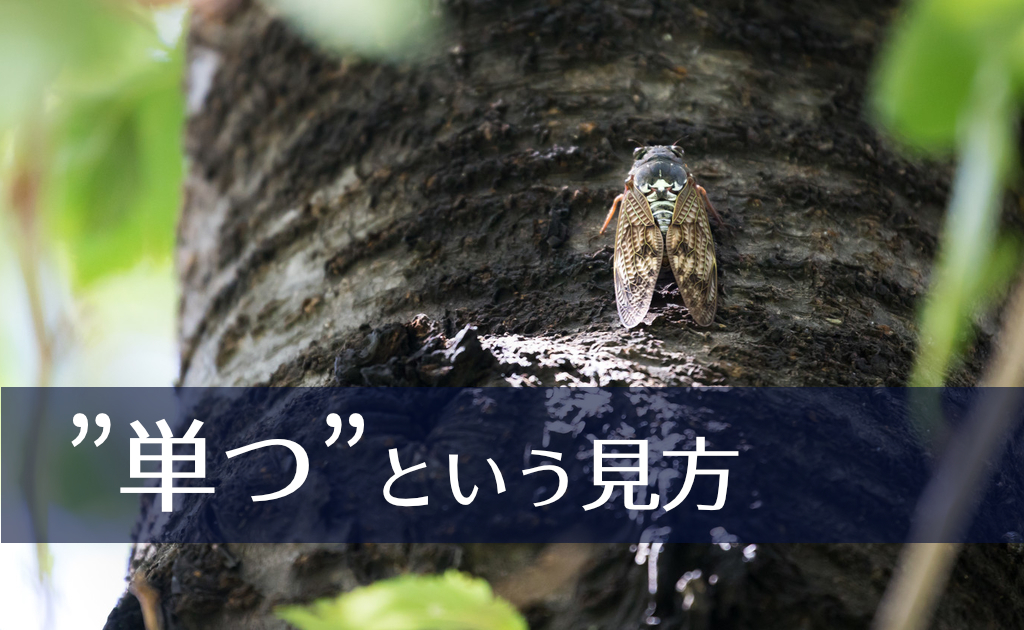 f:id:fumonken:20190822125436j:plain