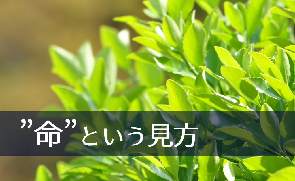 f:id:fumonken:20190824192906j:plain