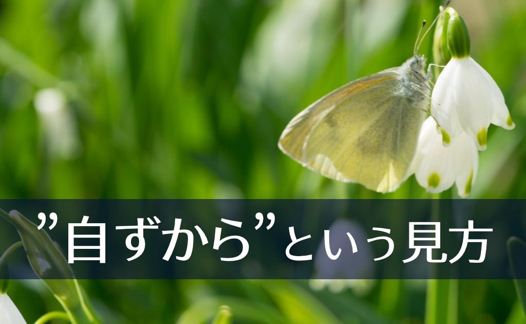 f:id:fumonken:20191220054416j:plain