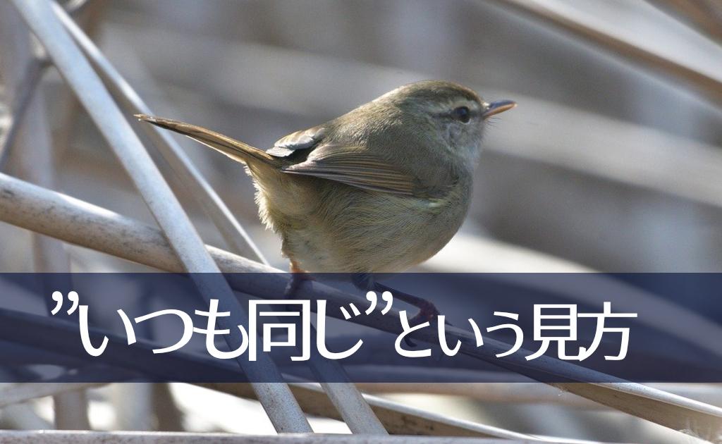 f:id:fumonken:20200313132940j:plain