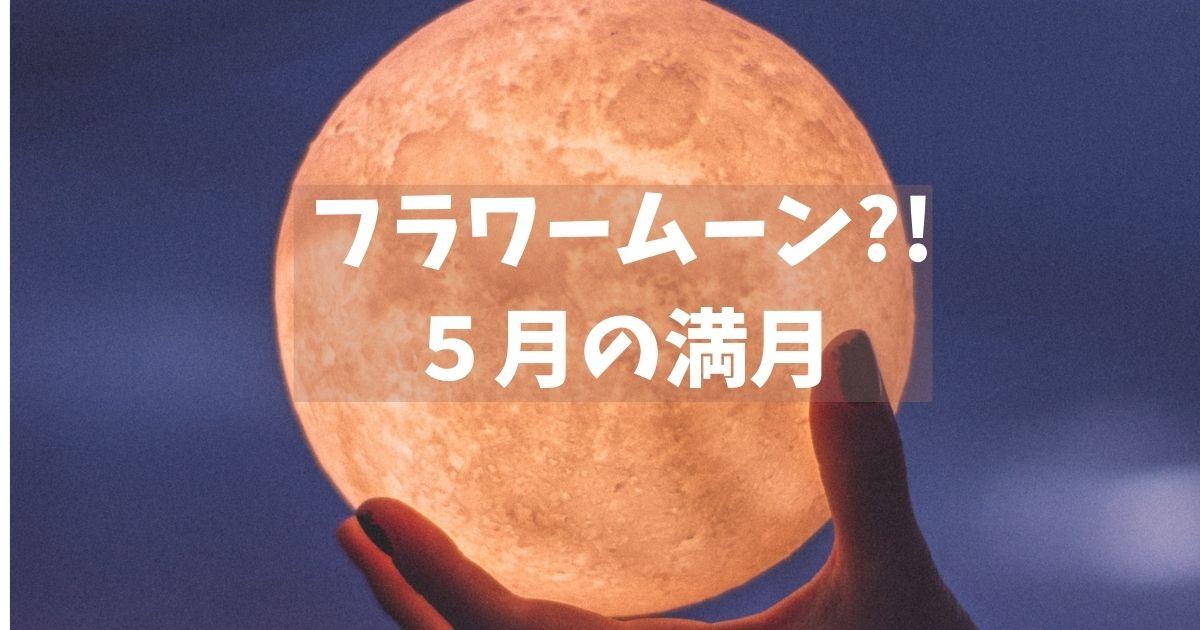 f:id:fumufumu55:20210524171503j:plain