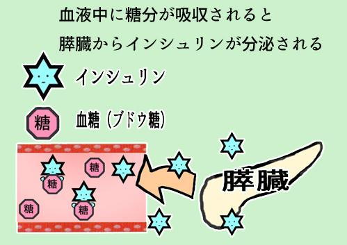f:id:fumusuroblog:20190713042542j:plain