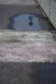[DA70]水面に映るもの