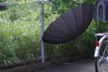 [DFA100]傘のある風