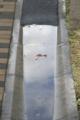 [DAL50-200]水面に映るもの