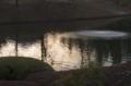[FA77]水面