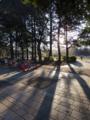 [Q08]公園