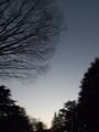 [Q08]黄昏