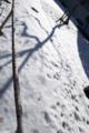[Q08]雪景色