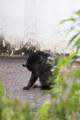 [Q06]猫写真