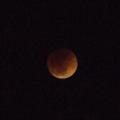 [DAL50-200]月蝕