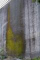 [DA35]壁