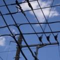 [Q06]電線