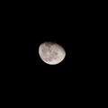[Q06]月夜