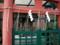 車折神社 水神社