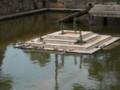 四天王寺 石舞台の亀