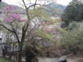 金剛城寺 護摩堂からの景色