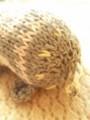 [Knitting]エストニアのあみぐるみ
