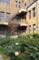 科博の中庭