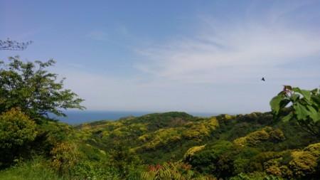 宗像・大島
