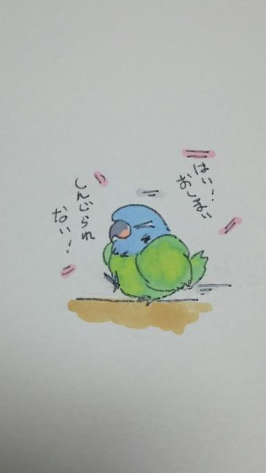 f:id:funifuni234:20170205181639j:plain