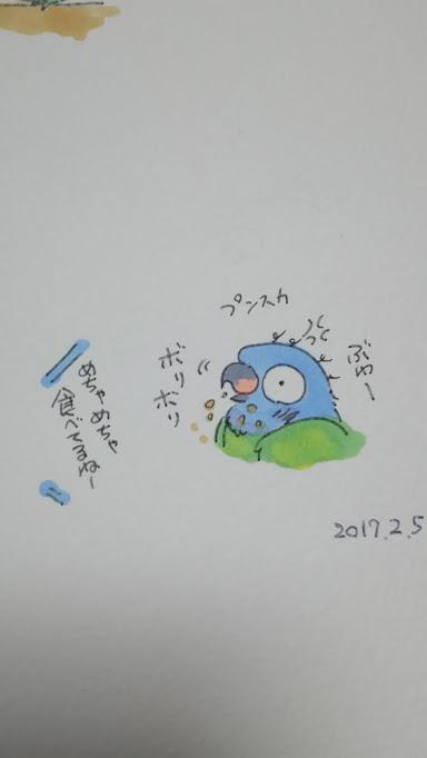 f:id:funifuni234:20170205181749j:plain