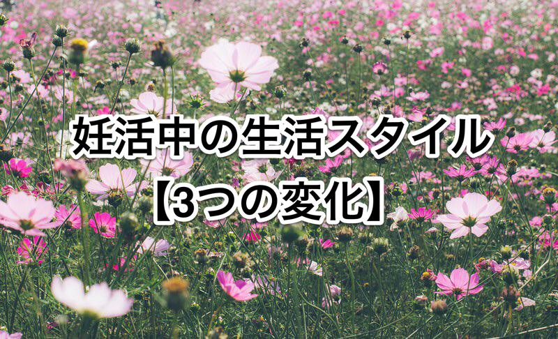f:id:funin2018:20180804213351p:plain