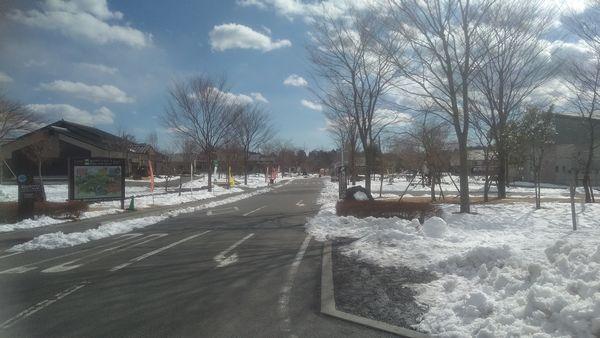 あさぎりフードパーク雪